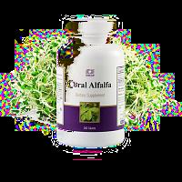 coral luzerne / coral alfalfa