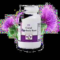 coral klettenwurzel / coral burdock root