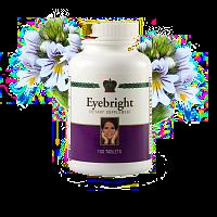 augentrost / eyebright